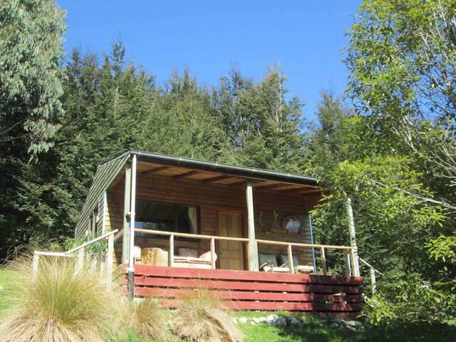 Freestone Hillside Cabin #2