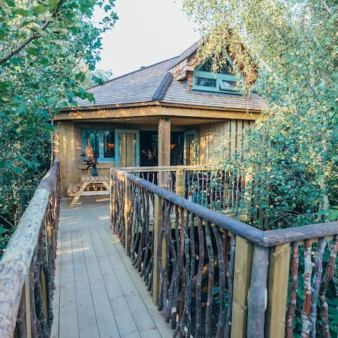 Quercus Tree House