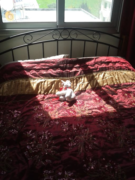 Part of the master bedroom,pooch not included!