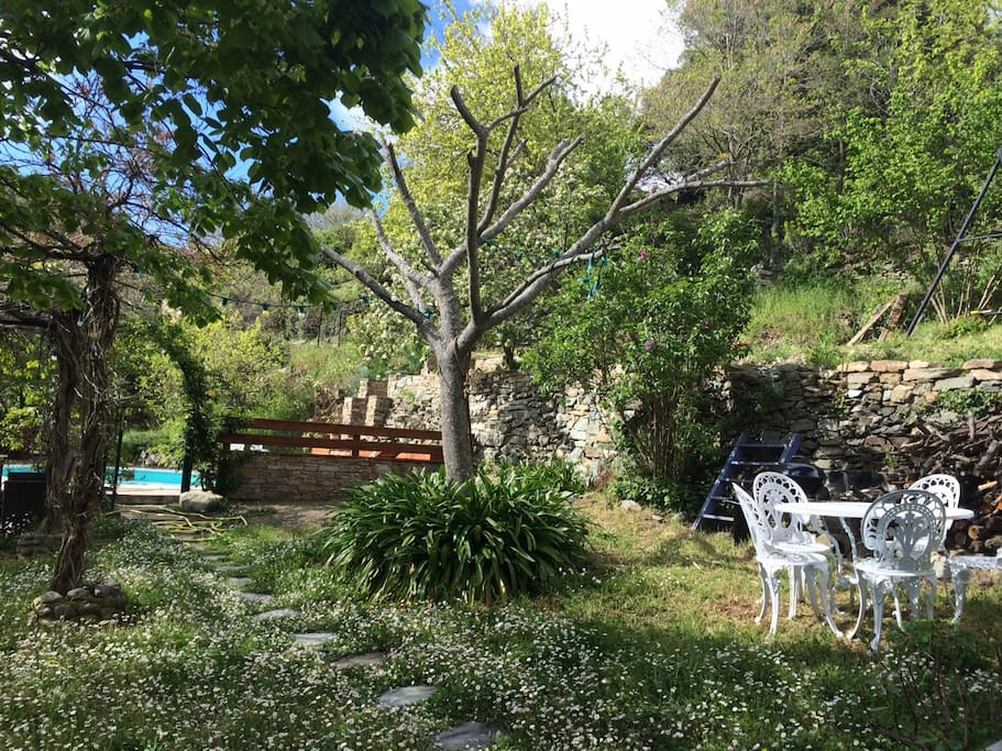 Coin jardin ombragé avec salon extérieur