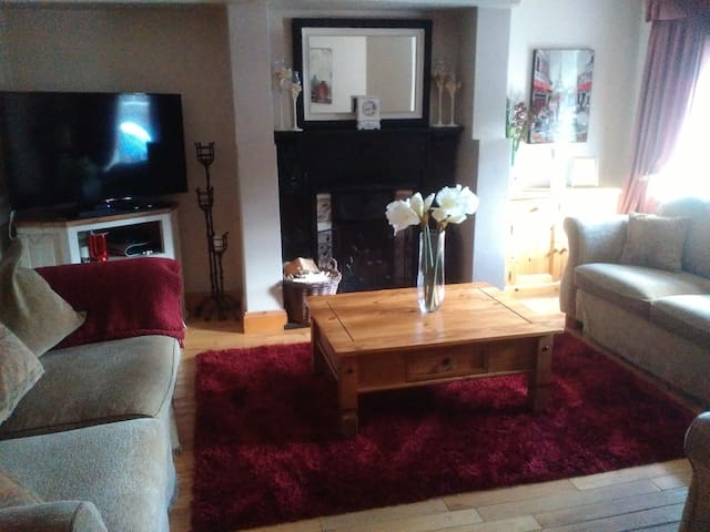 Waterford, City centre:TwinBeds (light b/fast inc)