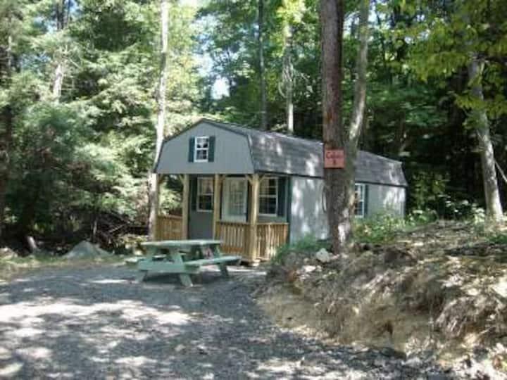 Cabin D at Abrams Creek