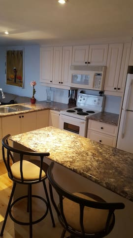 Cozy appt in the heart of DT Hull - Gatineau