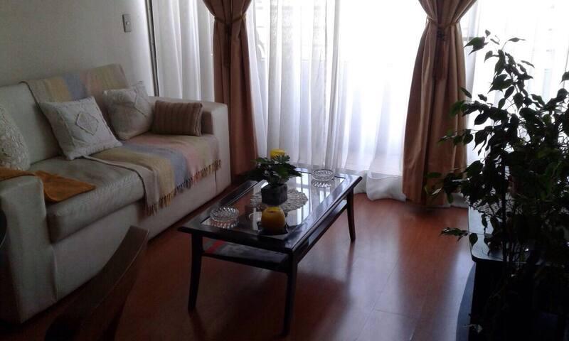 Apto de dos ambientes - Santiago - Apartmen