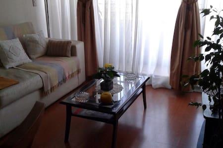 Apto de dos ambientes - Santiago - Wohnung
