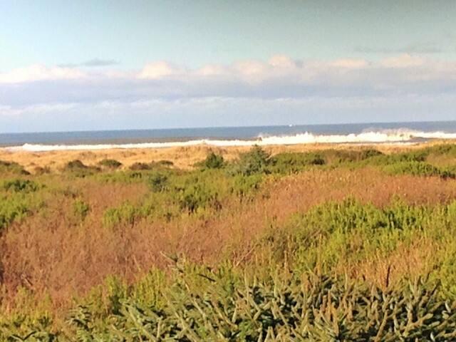 Ocean Front Home Room 1 mi to town - Ocean Shores - Huis