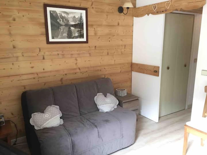 Studio de montagne au pied des pistes de ski