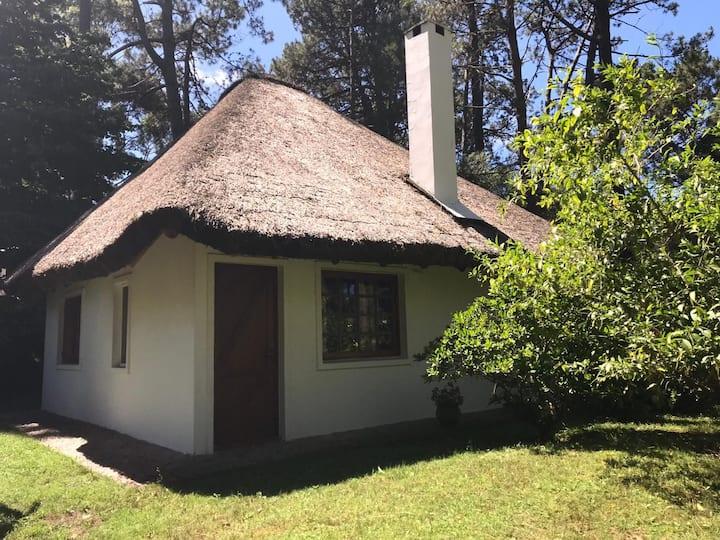 Cabañas en Punta Ballena,  Isla negra