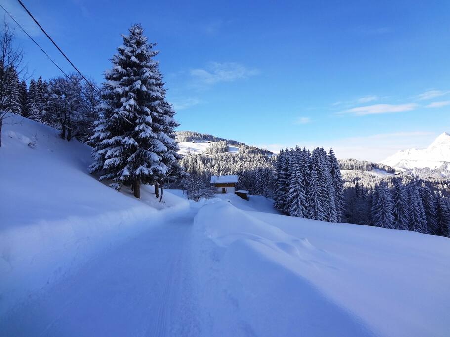 Approaching the chalet