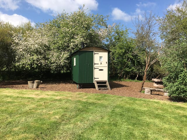 Shepherds Hut hideaway in the South Downs