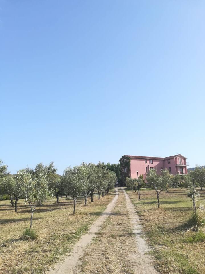 Appartamento tra mare e campagna (Nocellara)