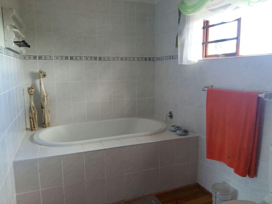 main bedroom bathroom with jucuzi bath