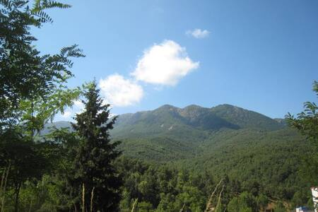 Descanso en Naturaleza,Energia, Respira,Disfruta - Sant Sadurní d'Osormort - Guesthouse