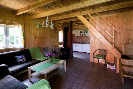 Domki Letnisowe Sasino (Domek Zielony) - Sasino