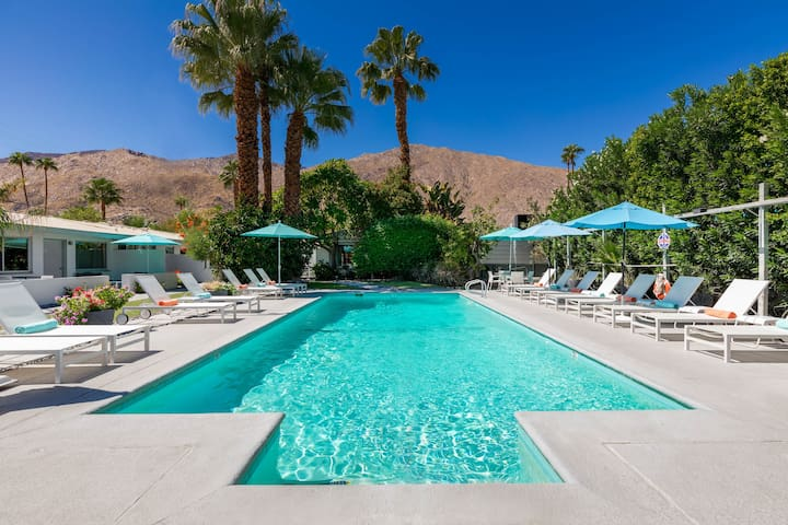 Entire hotel! Stunning Oasis with mid-century vibe