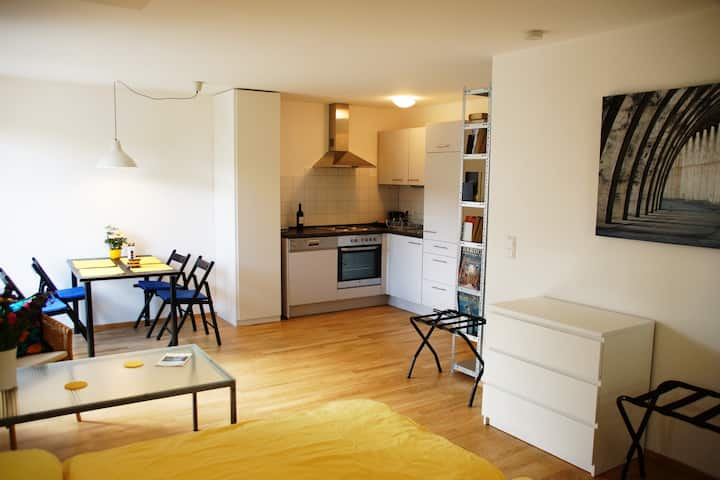 1 room apartment, calm & central, terrace. New!
