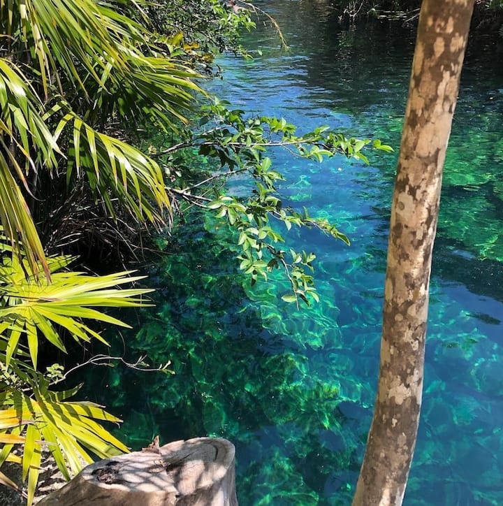 Hidden cenote ! ;)