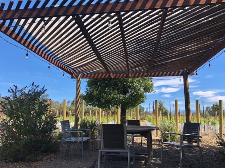 Eat your breakfast, lunch, and dinner underneath the pergola - shaded during the daytime and lights to enjoy in the evening.