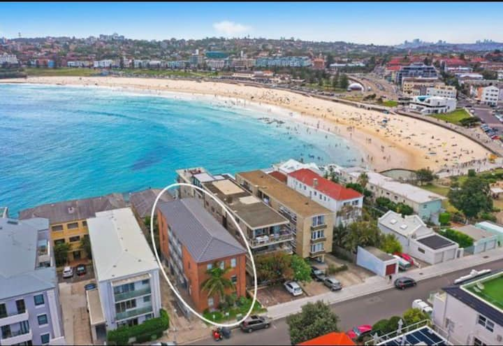 Glistening Bondi beach pad - steps to sand & surf