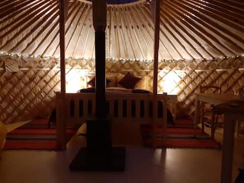 Rhoscolyn Yurt. The Golden Yurt