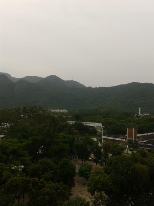 panoramica da vista da varanda, com a vegetação próxima e o parque da tv globo com a mata Atlântica ao fundo.