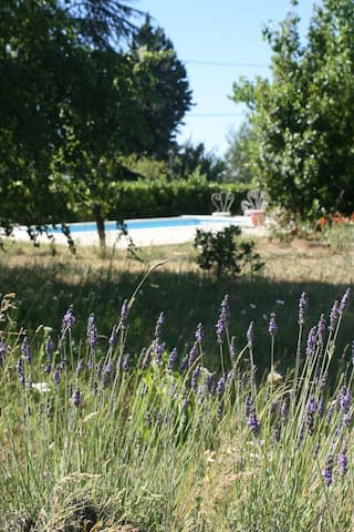 villa piscine en ardèche du sud