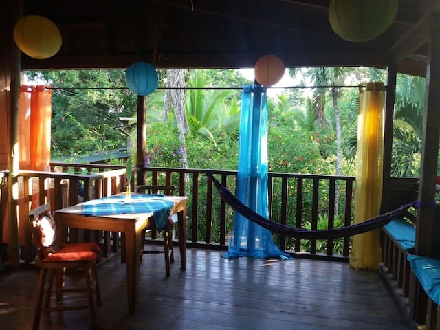 Private Room in MonkeyHouse National Park Cahuita