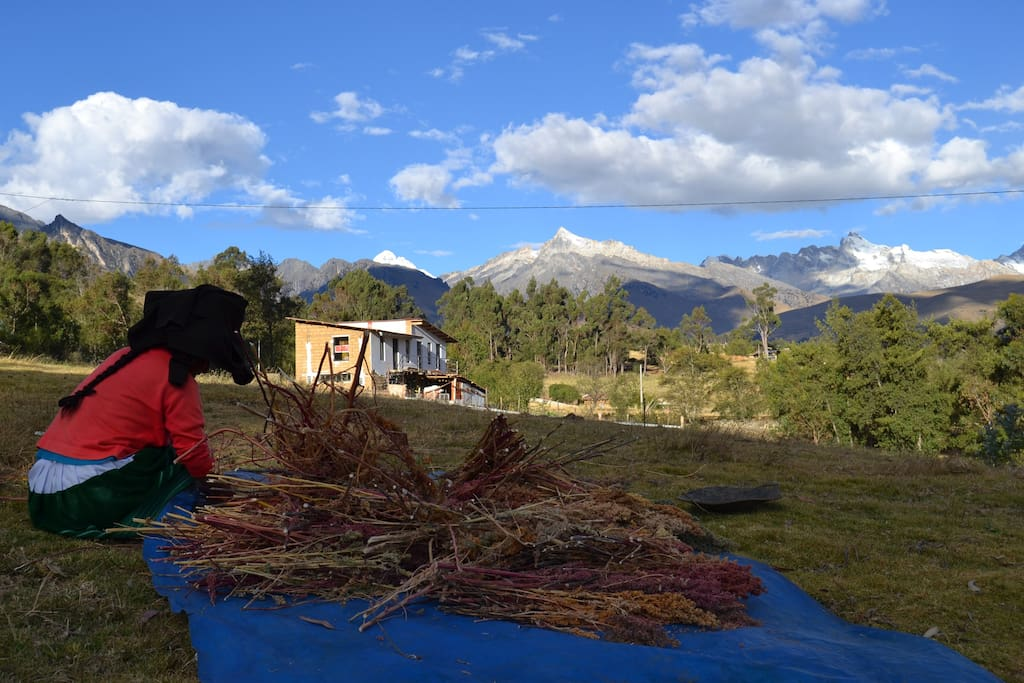Our peaceful homestay is set against the beautiful Cordillera Blanca - enjoy a truly unique experience in Northern Peru