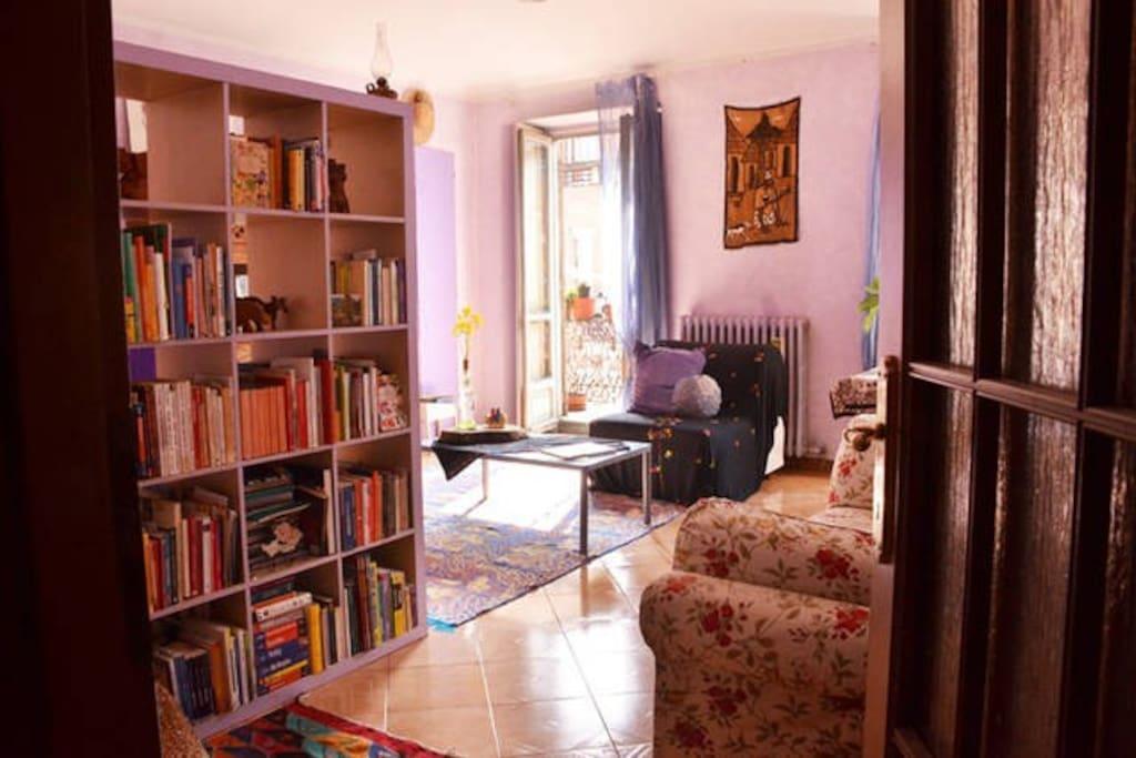la stanza e i libri