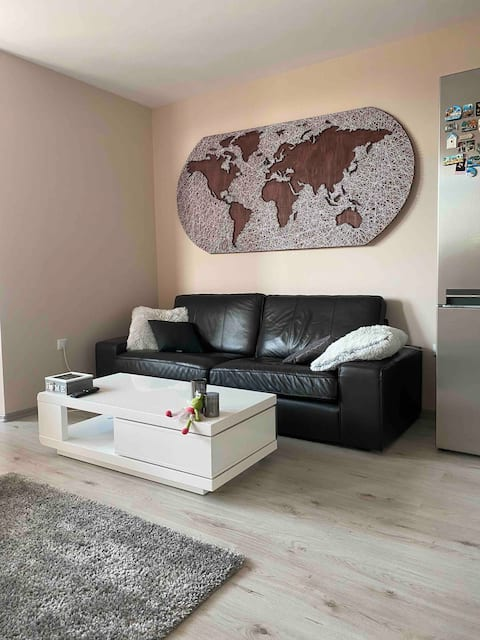 Sunny Spacious Apartment in a Great Location