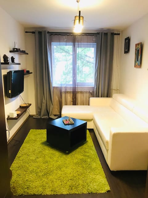 Zen Apartment