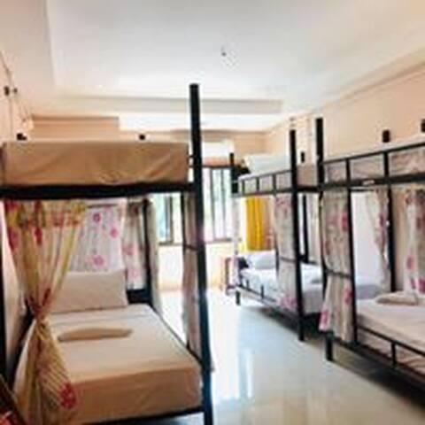 6-Beds Mixed Dorm