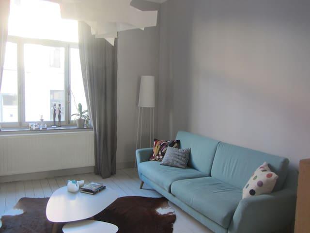 chambres dans maison familiale - Schaerbeek - Ev