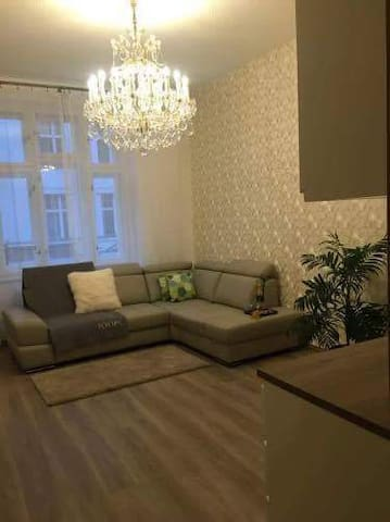 Luxurious & Cosy place. You will feel like a VIP. - Praha - Apartemen
