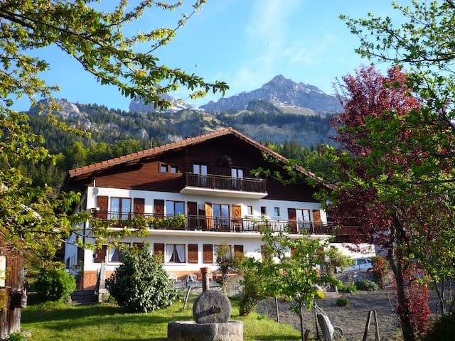 80 m² vue exceptionnel Mont Blanc - Passy - Appartement