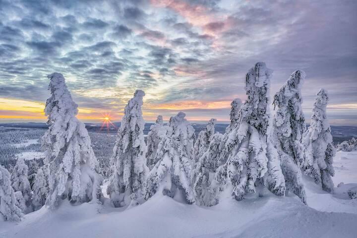 Winterlandschaft vom Brocken