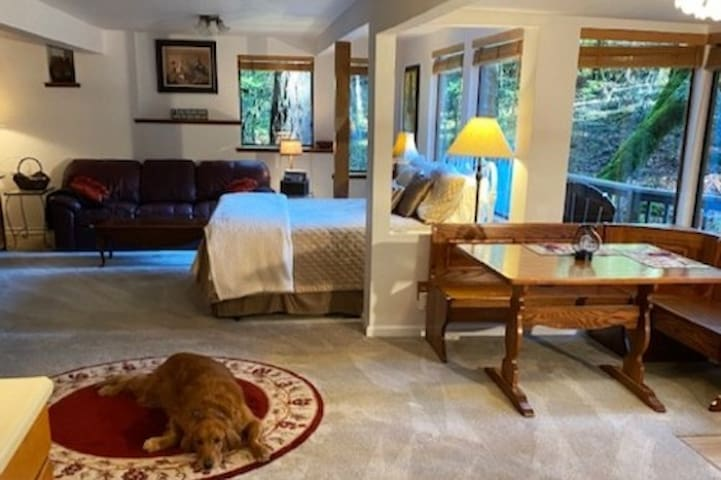 This is a comfortable, open, large space with lots of windows to your own private meadow and forest.  Our registered therapy dog, Gibbs will greet you for a  little bit of love therapy.  Sorry but Gibbs doesn't come with the space!  Enjoy your stay-