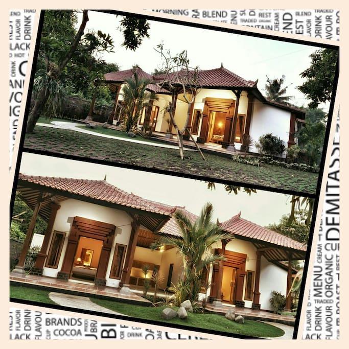 biorock homestay 2 wohnungen zur miete in gerokgak bali indonesien. Black Bedroom Furniture Sets. Home Design Ideas