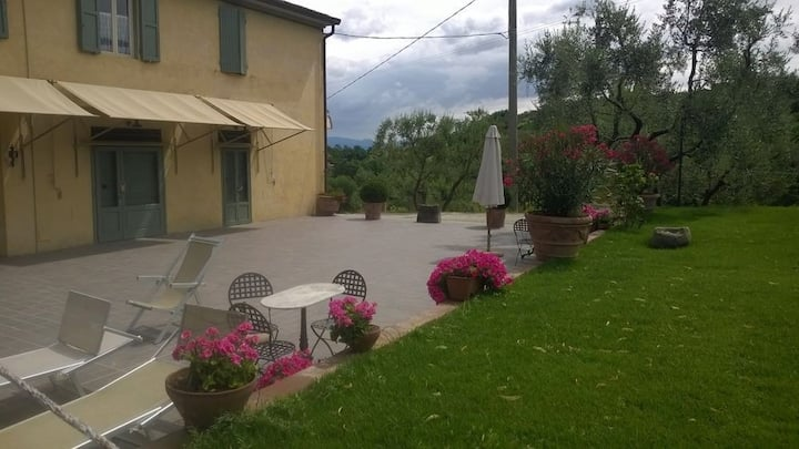 Vinaccia - studio in campagna