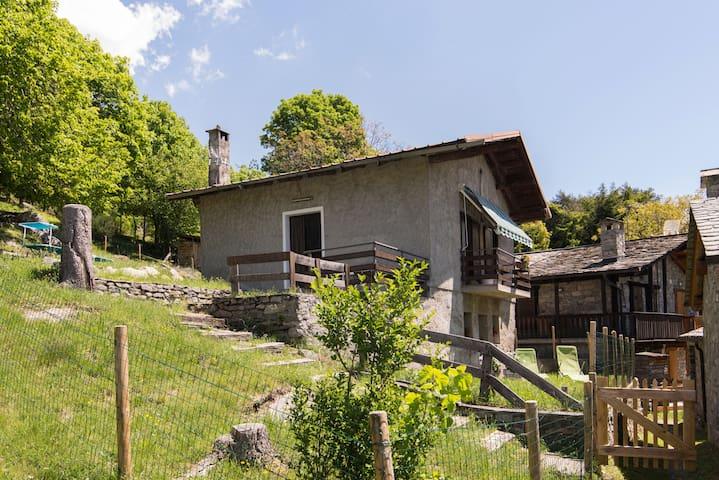 La Baita di Dory in Valtellina-Nice for your dogs