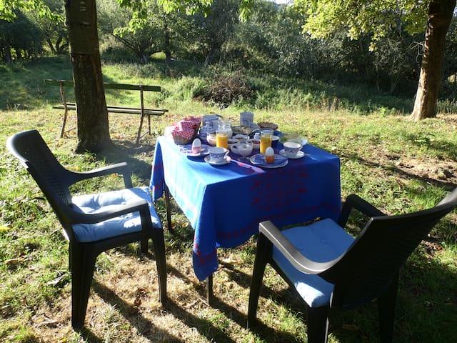 Das Frühstück auf der Wiese in der Morgensonne