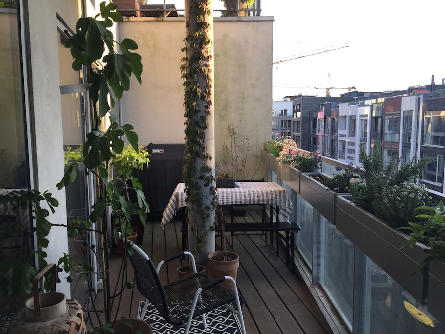 Balcony with afternoon/evening sun facing the canal