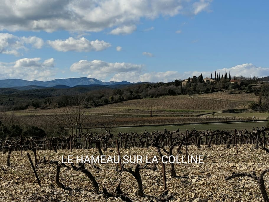 Tiny hilltop hamlet in the foothills of the Cevennes . Surrounded by vineyards and the Garrigue.