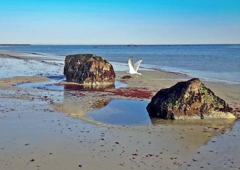 Rock Landing 2 BR Walking Distance to Everything