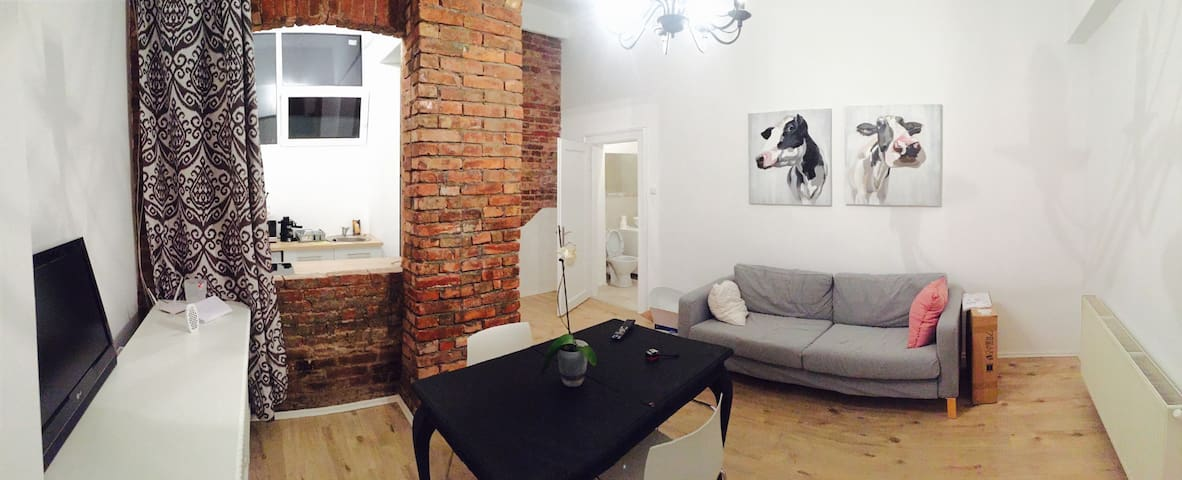 Modern Apartment, in the heart of the city(CLUJ) - Cluj-Napoca - Lägenhet