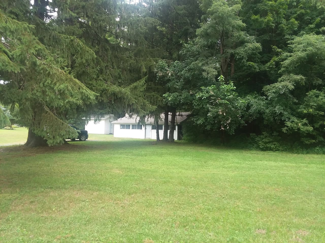 Bungalow sits on large, private, wooded lot