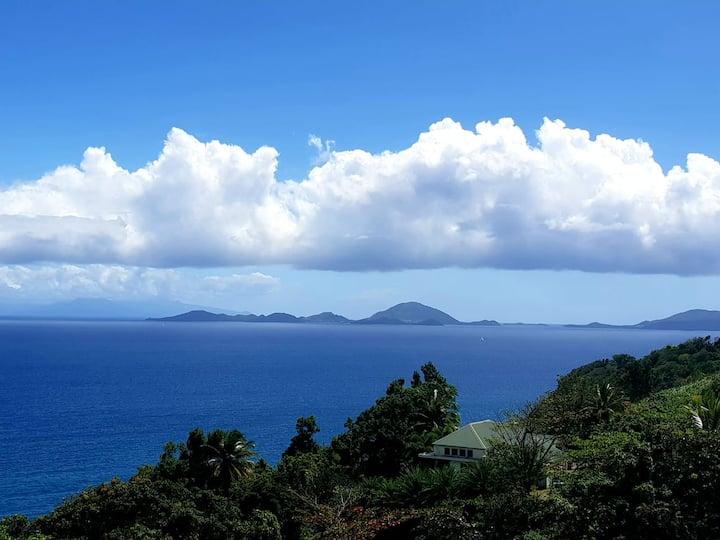 Tropical garden vue panoramique sur les Saintes