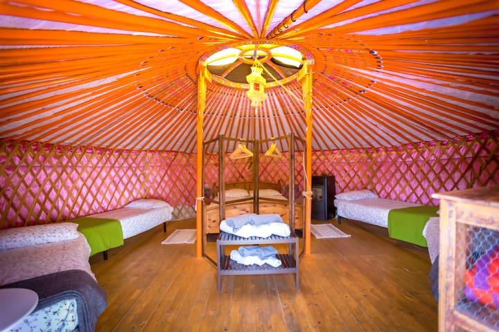 yurta malva interno