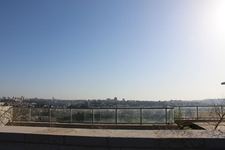 View on jerusalem from the garden