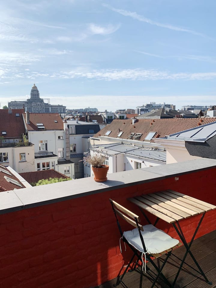 Big rooftop apartment in the heart of Brussels
